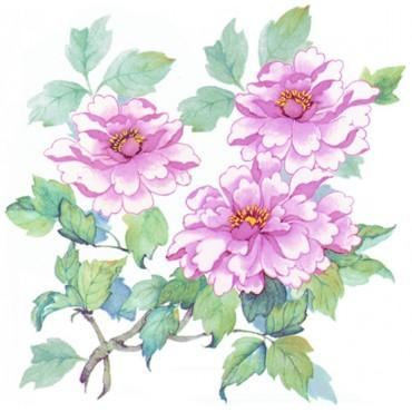 http://www.artystick.net/219-thickbox_default/pink-peonies.jpg