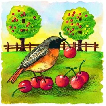 http://www.artystick.net/41-thickbox_default/bird-garden.jpg