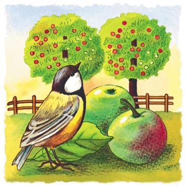 http://www.artystick.net/633-thickbox_default/bird-garden.jpg